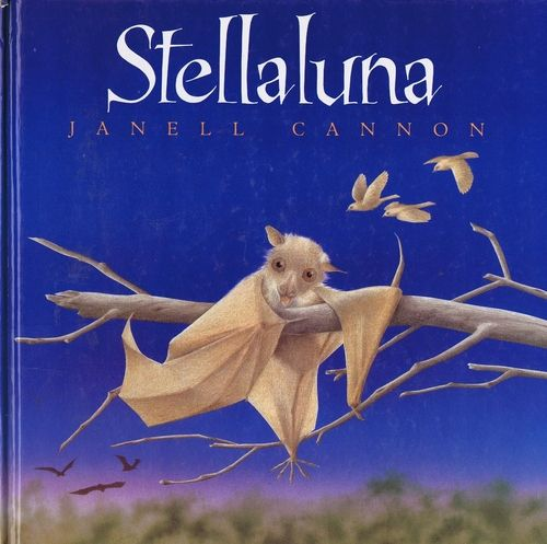Stellaluna, a bat separated from her mom, is raised by birds and finds herself very odd. In the end she rescues them and the four of them decide that while they may be very different, they are still friends and family.