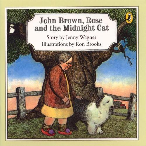 The book is about an elderly woman, Rose, and her beautiful loyal sheepdog John Brown. A strange black cat visits each night. Rose longs for the cat to join them in their home but John Brown won't allow it. The fears, loneliness and jealousies from different perspectives.