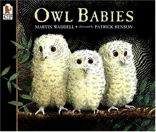 Three baby owls, Sarah, Percy and Bill, wake up one night in their hole in a tree to find that their mother has gone.